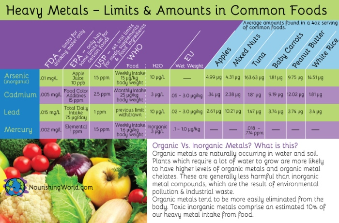 Heavy Metals – Limits & Amounts in Common Foods