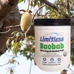 Limitless_Baobab