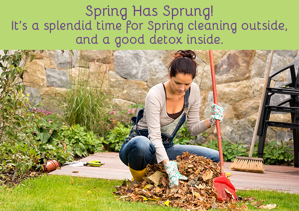 Spring Has Sprung! It's a splendid time for Spring cleaning outside, and a good detox inside.