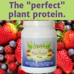 Perfect_Protein_Powder