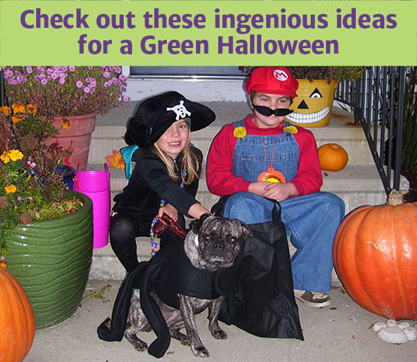 Green_Halloween_ideas