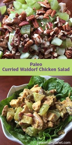 paleo_curried_waldorf_chicken_salad_recipe